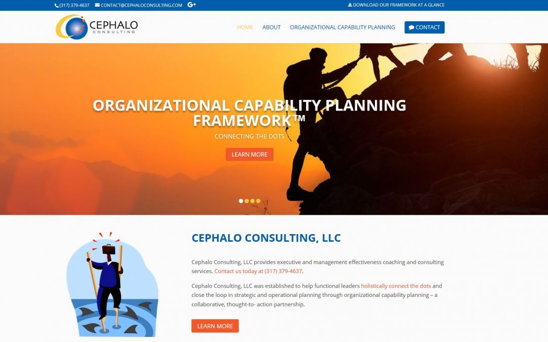 Cephalo Consulting – Example of Our Good Website Design